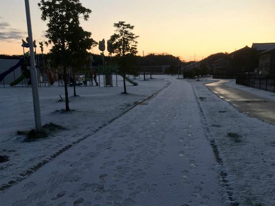 雪上ランニング_a0210340_08472943.jpg