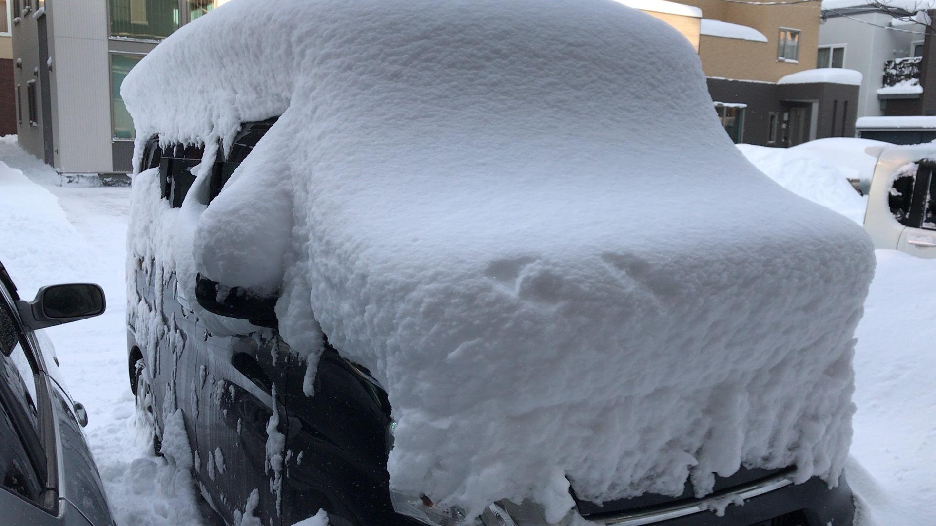 結局大雪!そう都合良くは行かないよね。_c0335145_23114992.jpeg