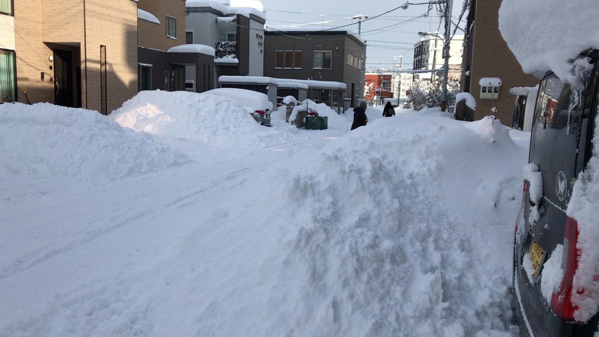 結局大雪!そう都合良くは行かないよね。_c0335145_23121097.jpeg