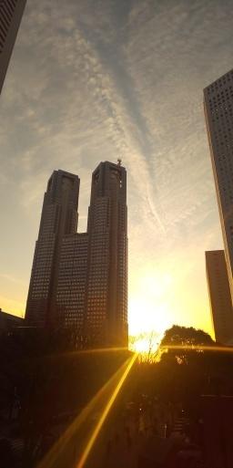 都庁に落陽、そして山田パンダはまた飛行機乗れる日が来るのでしょうか…。_b0096957_16594683.jpg