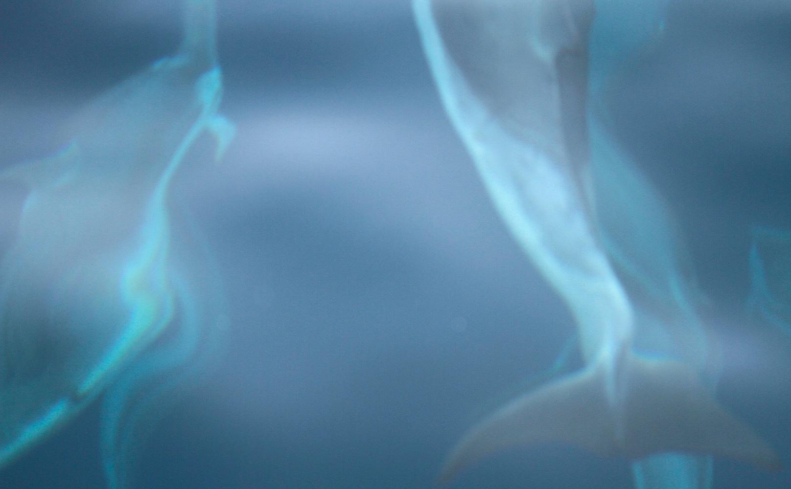洋上にて_e0158261_20065412.jpeg