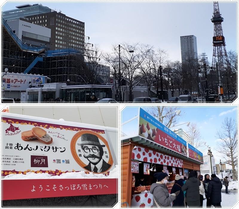 札幌雪祭り会場へ(1)_b0236665_07405700.jpg