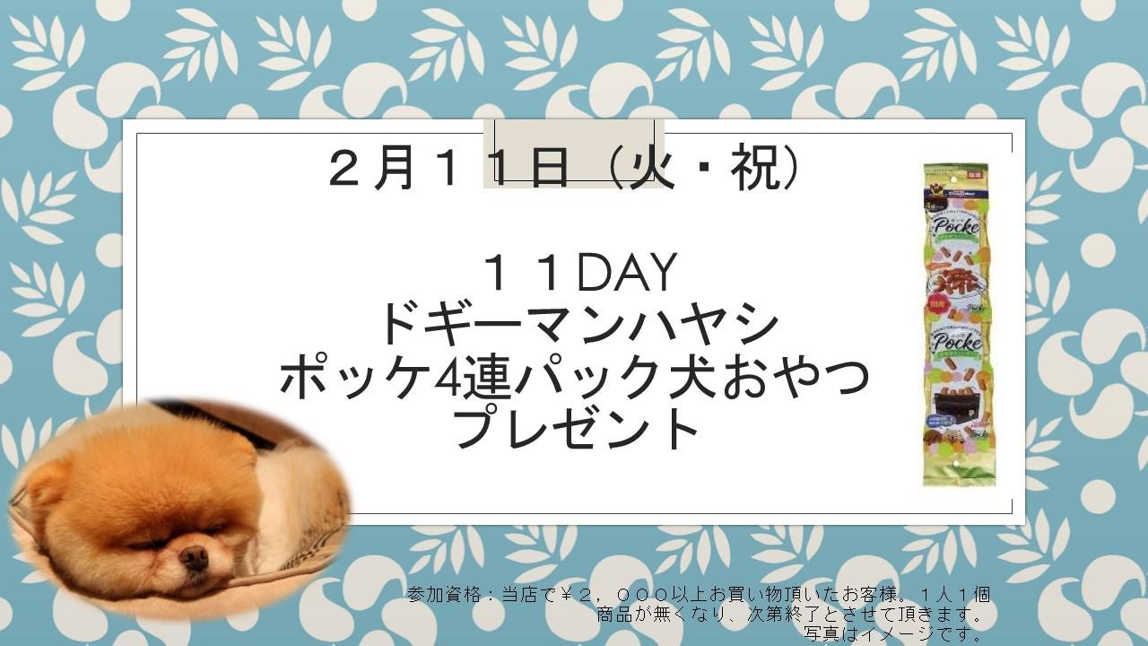 200207 11DAYイベント告知_e0181866_19130083.jpg