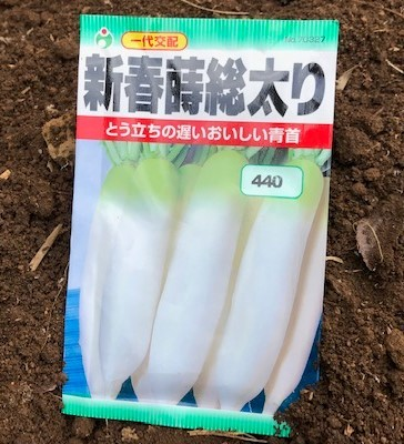 春大根とコマツナ種蒔き2・4_c0014967_17283516.jpg