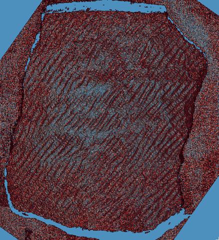 コラムリレー(第151回)フォトグラメトリとフィールドワーク_f0228071_19533973.jpg