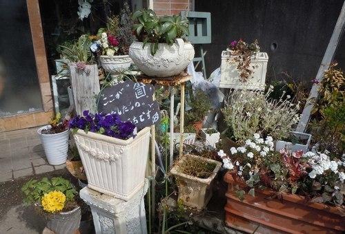 路傍の花、樹々の鳥(368) ~ アンティーク・ショップの店先で ~_b0102572_16412795.jpg