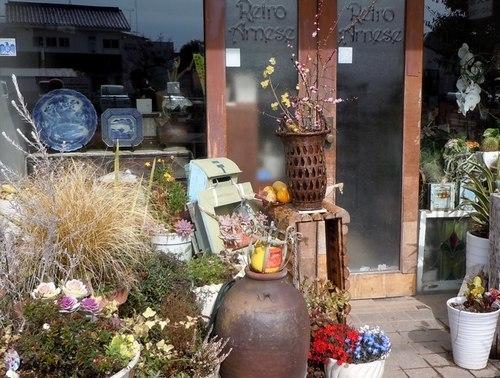 路傍の花、樹々の鳥(368) ~ アンティーク・ショップの店先で ~_b0102572_16415319.jpg