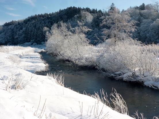 冬の朝を歩く_d0366590_19425670.jpg