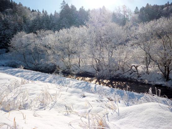 冬の朝を歩く_d0366590_19425717.jpg