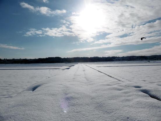 冬の朝を歩く_d0366590_19524113.jpg