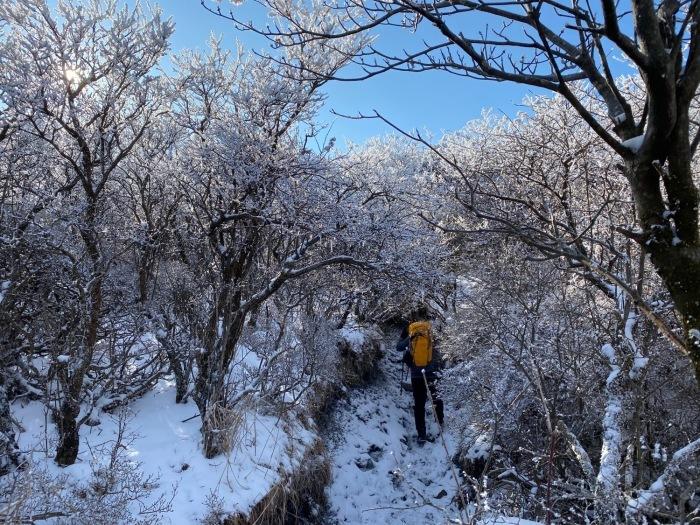 休みがあったら山登りin久住冬その2_f0232994_13350873.jpg
