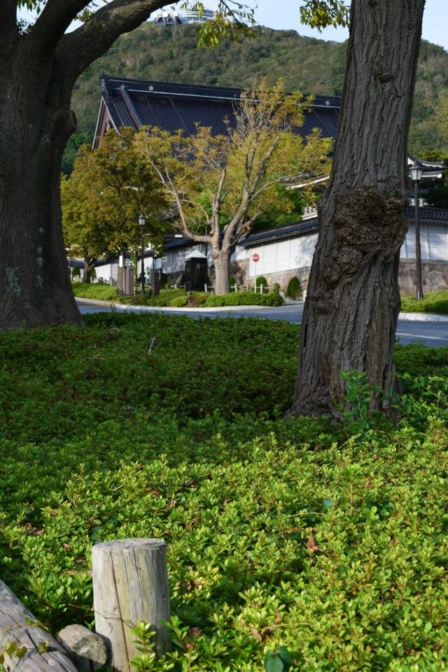 東本願寺函館別院(函館の建築再見)_f0142606_08283766.jpg