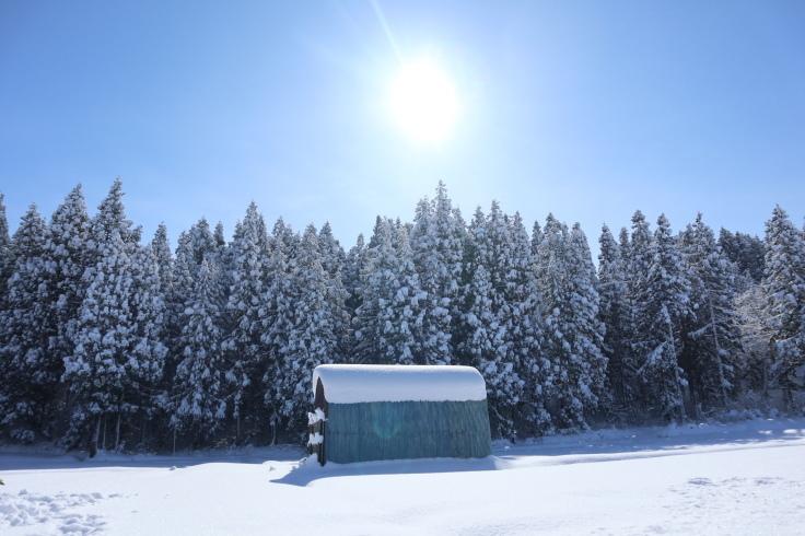 冬晴れ_f0067514_09403468.jpg