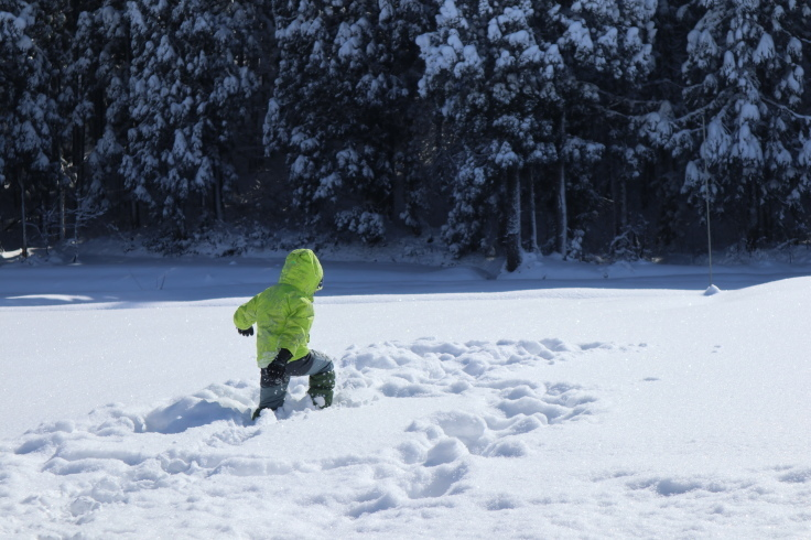 冬晴れ_f0067514_09424803.jpg