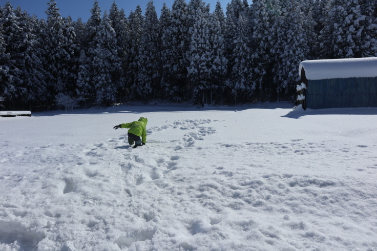 冬晴れ_f0067514_09431752.jpg