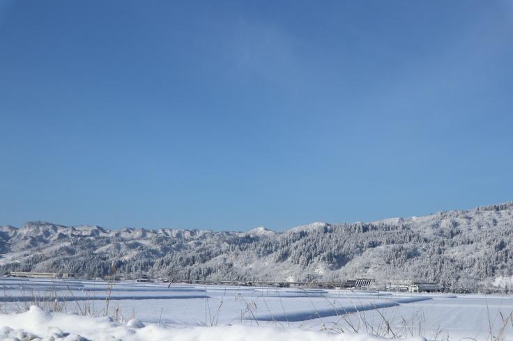 冬晴れ_f0067514_10203061.jpg