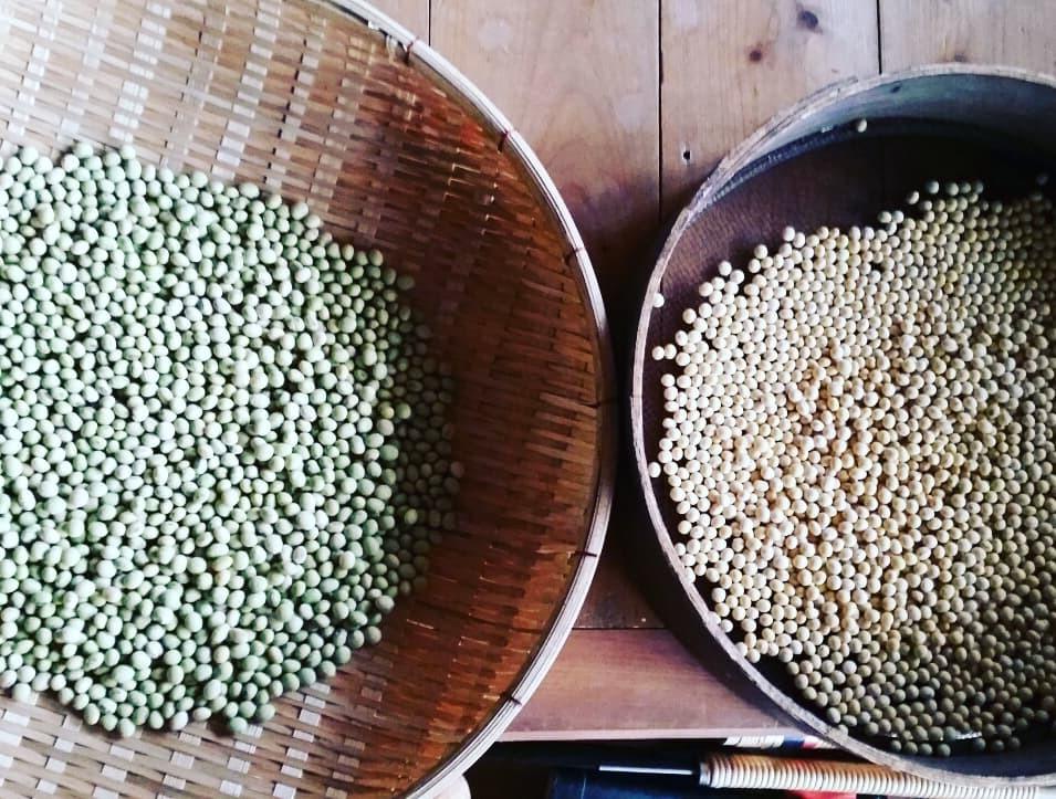 椎茸作り 豆乳作り_f0208315_18565647.jpg