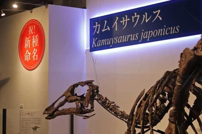 恐竜博2019~祝・新種記載!その名もカムイサウルス!!【前編】_b0355317_20521772.jpg