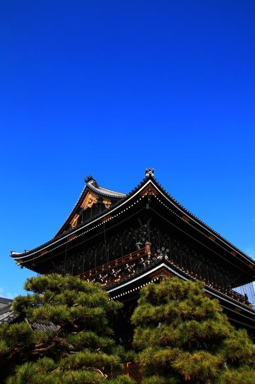 青空の京都さんぽ_f0209122_11061444.jpg