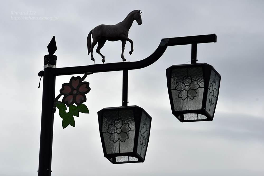 2017.5.14 静内の街中の電灯いろいろ_f0250322_21215884.jpg