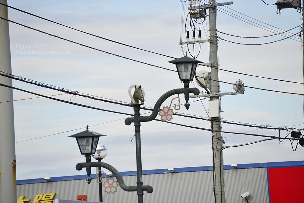 2017.5.14 静内の街中の電灯いろいろ_f0250322_2121873.jpg