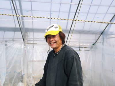 夢スイカ スイカのつる引き後の様子(2020) 小玉は3本仕立ての2玉収穫、大玉は2本仕立ての1玉収穫!_a0254656_17233214.jpg