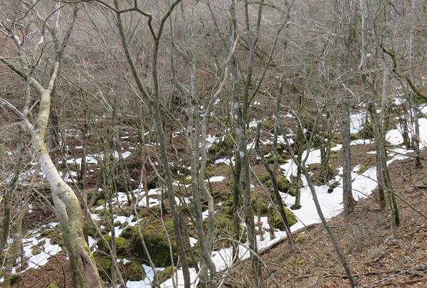 冬の越前岳_d0164761_15481852.jpg