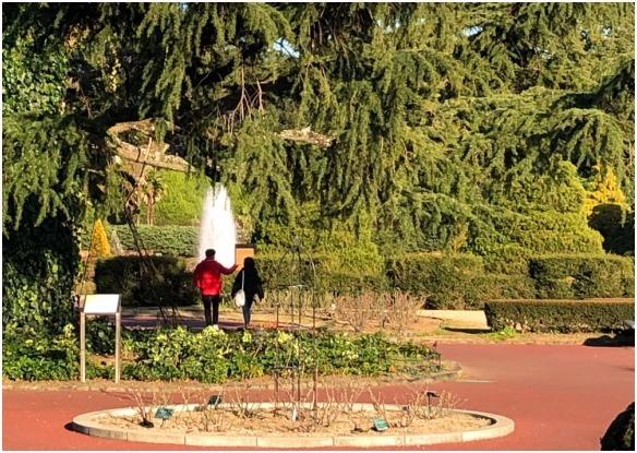 < 植物園 >_c0036080_13424859.jpg