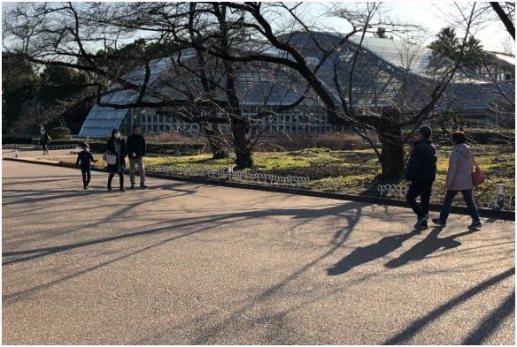 < 植物園 >_c0036080_13474495.jpg