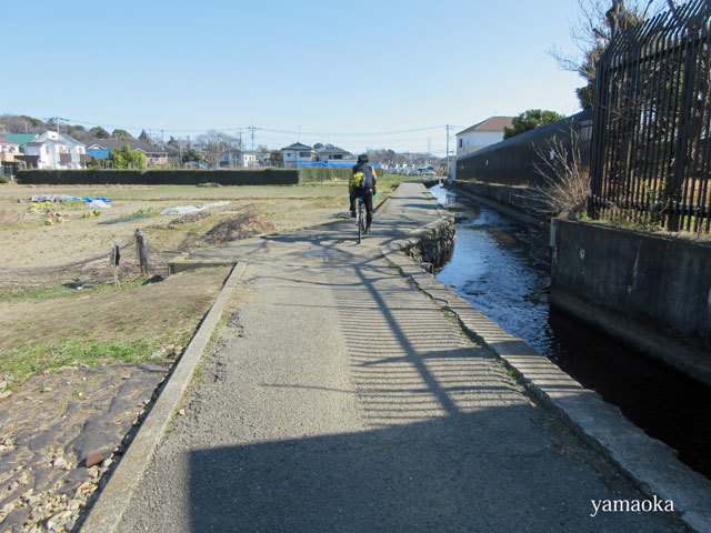 武蔵野の一人歩き。_f0071480_15151502.jpg