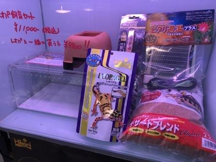 2/8 店長日記_e0173381_18311079.jpg