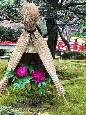 島根 出雲&松江の旅 2日目_a0394182_15022599.jpg