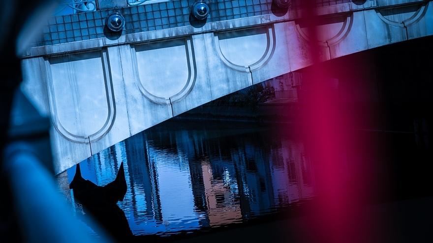 厳寒の日の運河地帯_d0353489_18320263.jpg