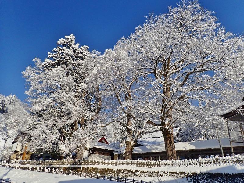 浦佐の美しい冬景色を見ることが出来ました!_c0336902_16522161.jpg