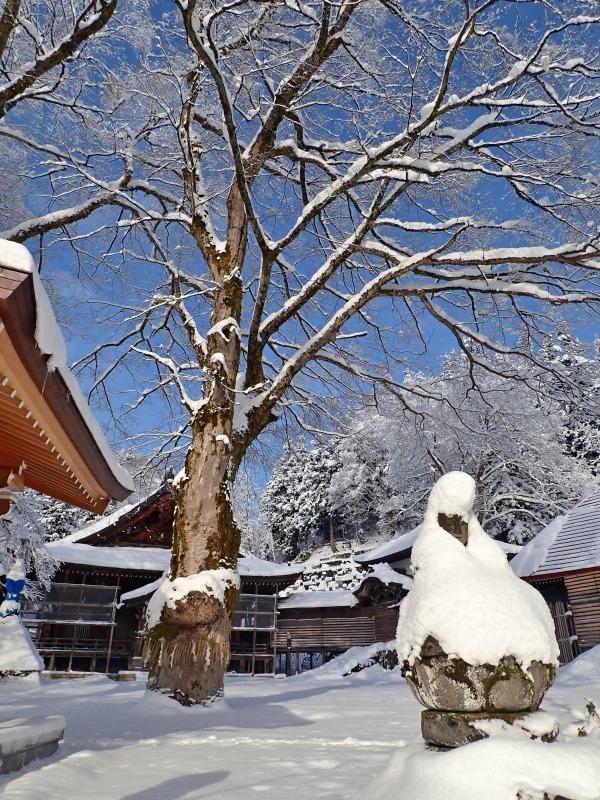 浦佐の美しい冬景色を見ることが出来ました!_c0336902_16523410.jpg