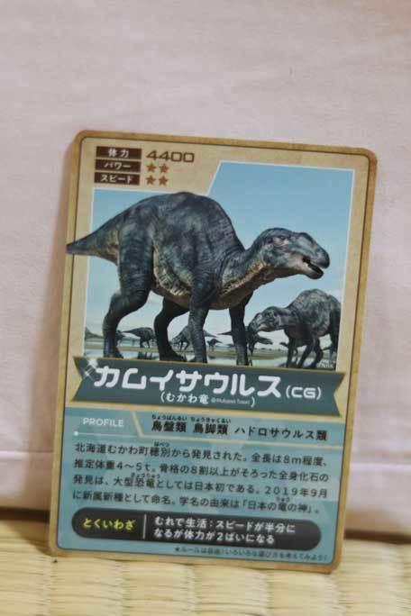 恐竜博2019~祝・新種記載!その名もカムイサウルス!!【後編】_b0355317_11362226.jpg