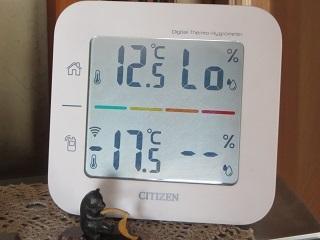 今朝は寒かったですね_b0405523_11224337.jpg