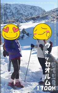 🎵 チェジュで雪 🎵_a0115924_16591539.png