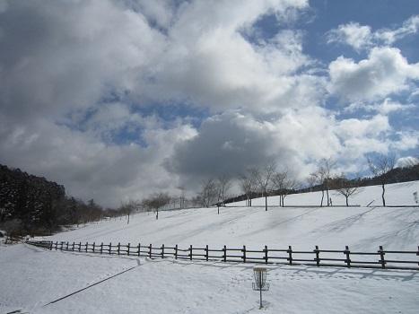 京都のお山で雪あそび(1)_b0177436_22463009.jpg