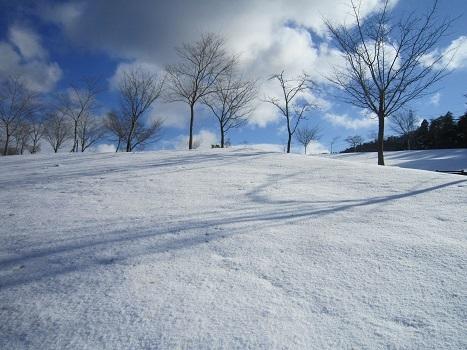 京都のお山で雪あそび(1)_b0177436_22595172.jpg