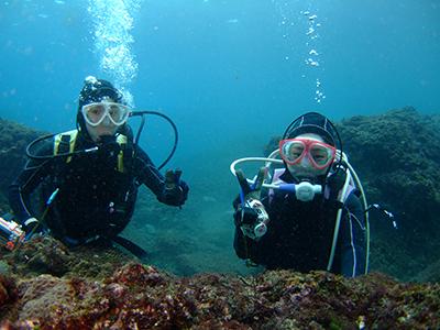 冬だけど、体験ダイビング人気です(^^)v_b0189640_17543039.jpg