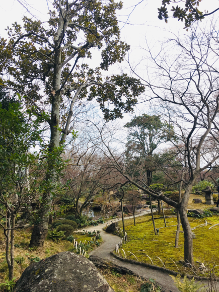 京都へひとり旅_b0405445_13291674.jpg