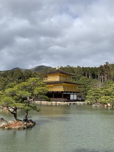 京都観光_b0145846_12025698.jpg