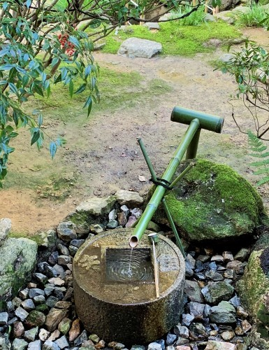 京都観光_b0145846_12243425.jpg