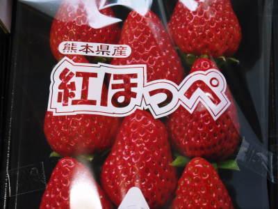熊本産高級イチゴ『完熟紅ほっぺ』完熟の美味さ!朝採りの新鮮さ!こだわり減農薬栽培の安全性!が大好評!!_a0254656_17354782.jpg