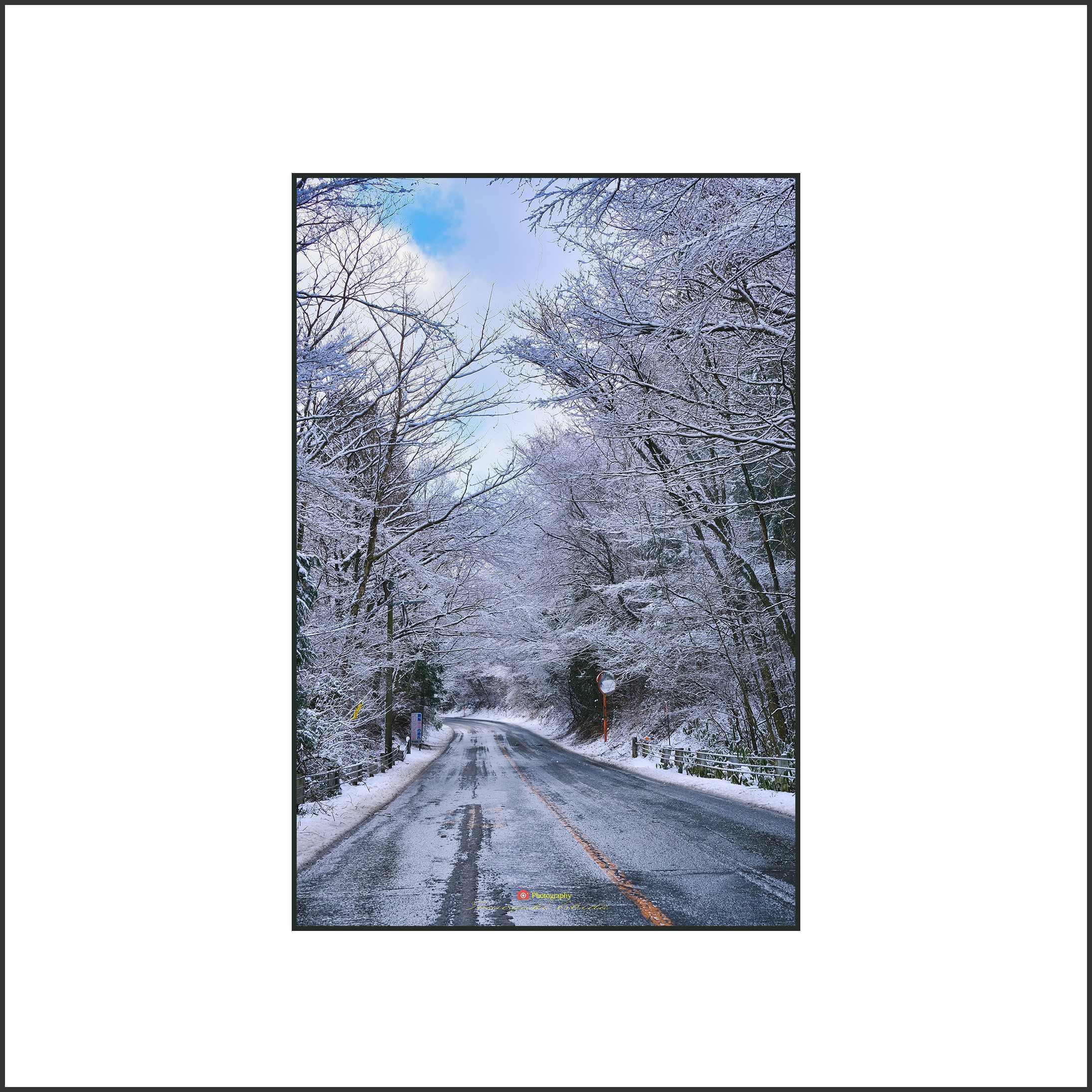 雪の朝_c0253556_06364616.jpg