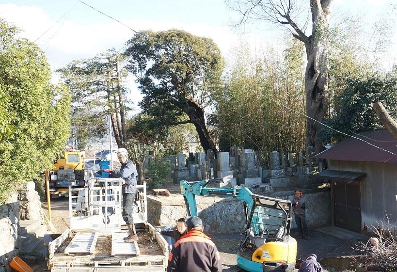 墓のヒノキのこと_b0124462_11542457.jpg