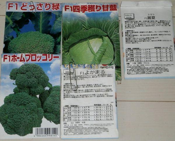 春の種蒔き第一弾(キャベツ、ブロッコリー、馬鈴薯)_f0018078_18561597.jpg