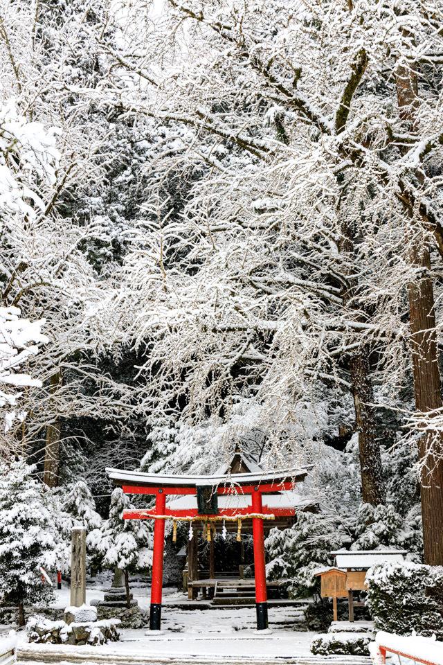雪景色!  ~岩戸落葉神社~_b0128581_20041771.jpg