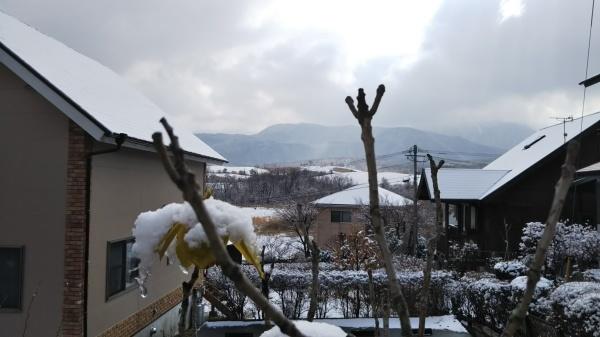 この冬はじめての雪景色_e0262382_20581275.jpg